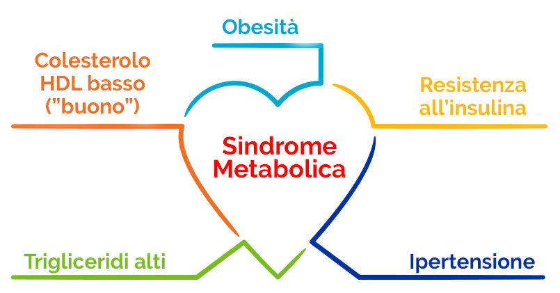 Questa immagine ha l'attributo alt vuoto; il nome del file è sindrome-metabolica-1.jpg